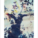 Purchase works by Wanda Boudreaux